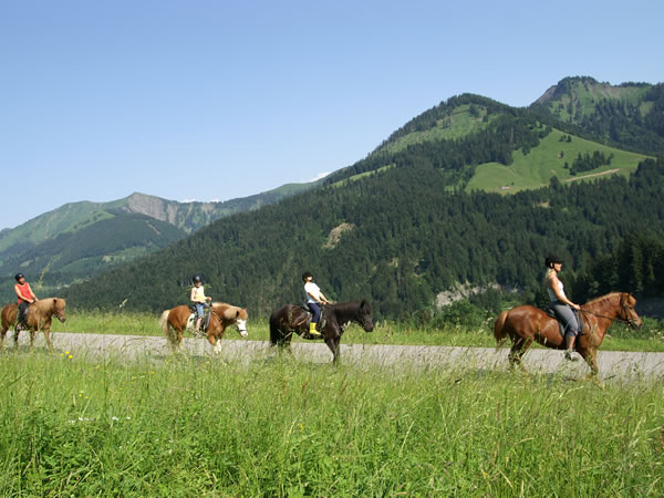Colorado Horseback Riding